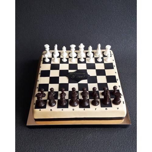 №489 Торт шахматы